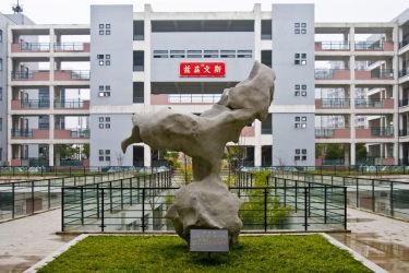 """无锡市凤翔实验学校2020""""翔之凤""""评选"""